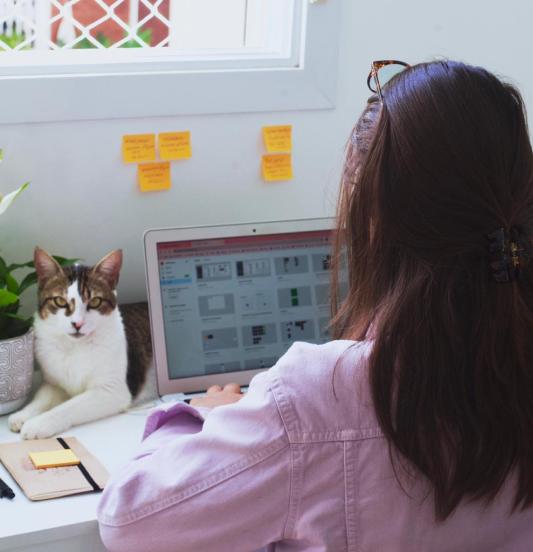 Colabora trabalhando em home office