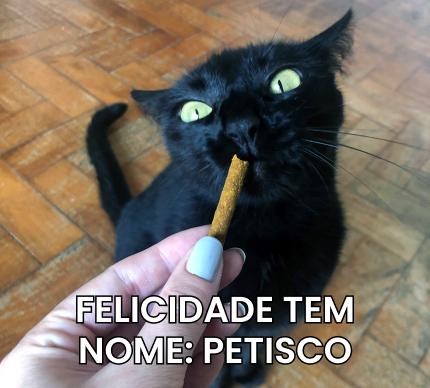 """Gato olhando para petisco, junto com legenda escrita """"Felicidade tem nome: pestisco""""."""""""